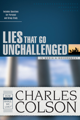Lies That Go Unchallenged in Media & Government - Softcover