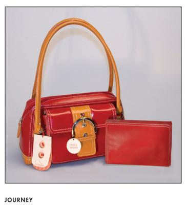 Veritas Journey Bible and Purse: NLT - Imitation Leather