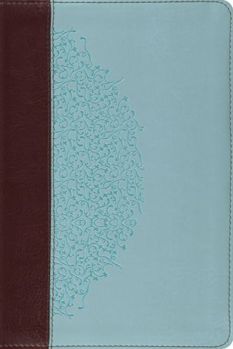 ESV Study Bible, Personal Size  - Imitation Leather Multicolor With ribbon marker(s)