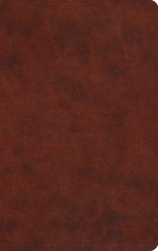 ESV Large Print Value Thinline Bible (TruTone, Chestnut) - Imitation Leather