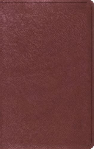 ESV Value Thinline Bible (TruTone, Burgundy) - Imitation Leather