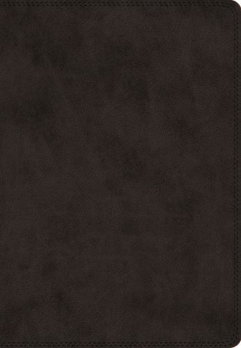 ESV Giant Print Bible  - Imitation Leather Multicolor With ribbon marker(s)