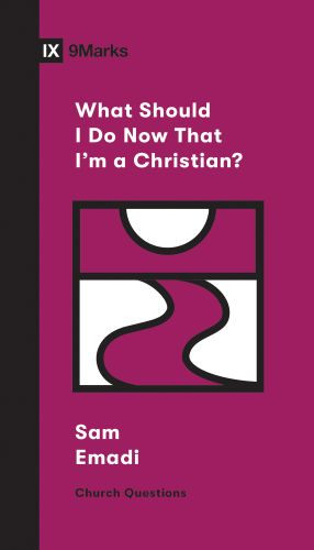 What Should I Do Now That I'm a Christian? - Softcover