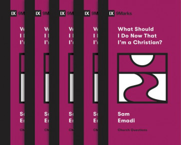 What Should I Do Now That I'm a Christian?  - Multiple copy pack