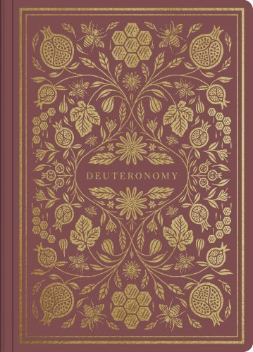 ESV Illuminated Scripture Journal: Deuteronomy - Softcover Multicolor