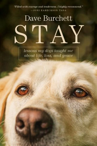 Stay - Softcover