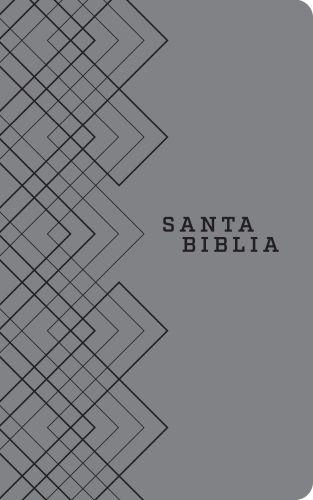 Santa Biblia NTV, Edición ágape (SentiPiel, Gris) - LeatherLike Gray
