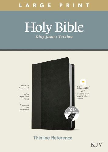 KJV Large Print Thinline Reference Bible, Filament Enabled Edition (Red Letter, LeatherLike, Black/Onyx, Indexed) - LeatherLike Black/Onyx/Multicolor With thumb index and ribbon marker(s)