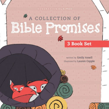 A Collection of Bible Promises 3-book set: You Are / Tonight / Chosen - Board book