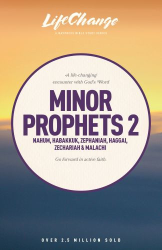 Minor Prophets 2 - Softcover