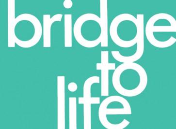 Bridge to Life (green) 25-pack - Pamphlet