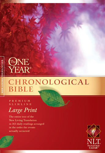 Bibles At Cost The One Year Chronological Bible Nlt border=
