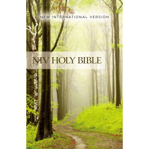 NIV, Value Outreach Bible, Paperback - Softcover