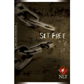 Set Free - New Believer's NT - Softcover