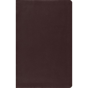 ESV Large Print Thinline Reference Bible (Brown) - Leather / fine binding With ribbon marker(s)