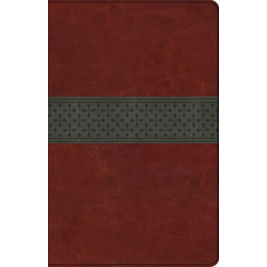 ESV Large Print Thinline Reference Bible  - Imitation Leather Multicolor With ribbon marker(s)