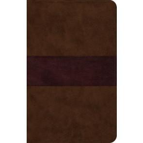 ESV Large Print Thinline Bible (TruTone, Chocolate/Plum, Trail Design) - Imitation Leather With ribbon marker(s)