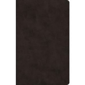 ESV Large Print Value Thinline Bible (TruTone, Black) - Imitation Leather