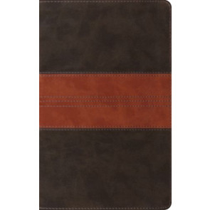 ESV Thinline Reference Bible  - Imitation Leather Multicolor With ribbon marker(s)