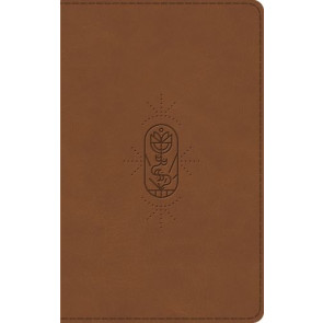 ESV Kid's Bible, Thinline  - Imitation Leather Multicolor With ribbon marker(s)