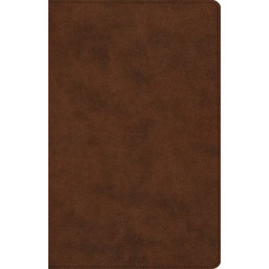 ESV Large Print Thinline Reference Bible (TruTone, Brown) - Imitation Leather With ribbon marker(s)