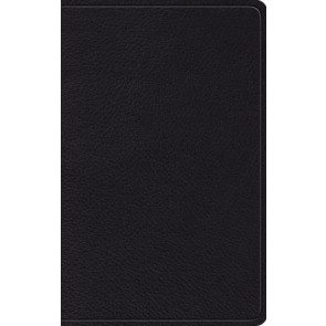 ESV Thinline Bible (Black) - Leather / fine binding With ribbon marker(s)