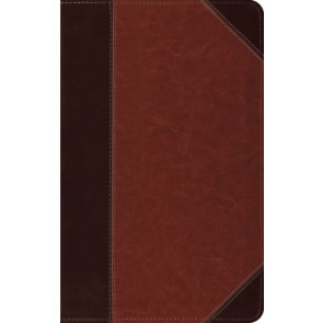 ESV Thinline Bible  - Imitation Leather Multicolor With ribbon marker(s)