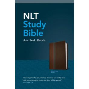 NLT Study Bible, TuTone (Red Letter, LeatherLike, Brown/Slate) - LeatherLike Brown/Slate/Multicolor With ribbon marker(s)
