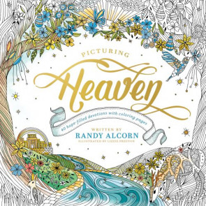 Picturing Heaven - Softcover