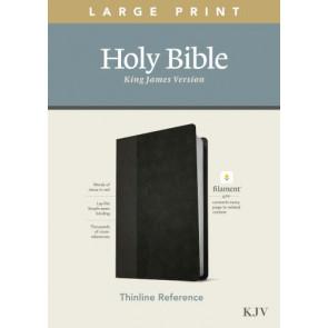 KJV Large Print Thinline Reference Bible, Filament Enabled Edition (Red Letter, LeatherLike, Black/Onyx) - LeatherLike Black/Onyx/Multicolor With ribbon marker(s)