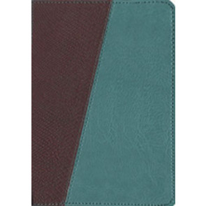 The Message Compact, Python (Leather-Look, Brown/Teal) - Leather-Look Brown/Multicolor/Teal With ribbon marker(s)